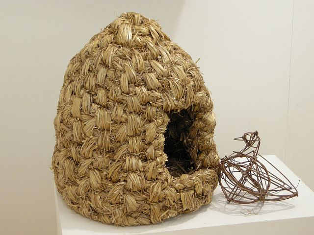 Irish hen's nest