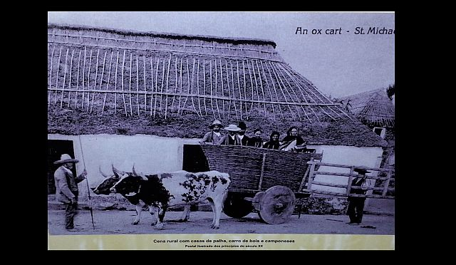 Azores tradtions ox cart and straw roofed houses